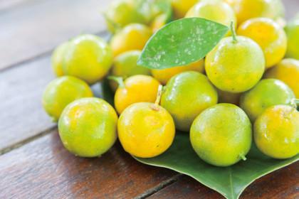 Hamamoto Fruit World