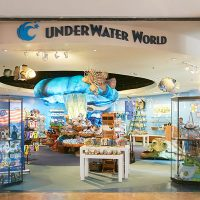 Under Water World Logo Shop ●2F